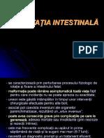 MALROTATIA INTESTINALA.ppt