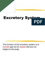 Excretory System Francis