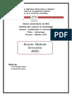 raport RMI.docx