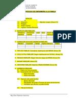 Guía de Proceso de Familia (1)