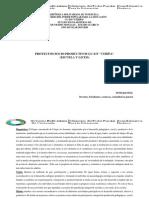 Plan de Accion Socioproductivo 2019