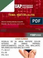 CELULITIS_ MENDEZ HUAYTALLA ESTEFANY.pptx