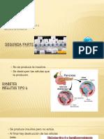 Segunda Parte de Diabetes Mellitus