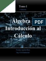 Algebra e Introduccion Al Calculo 1