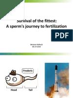 Pub Talk Journey Of Fredrick The Sperm