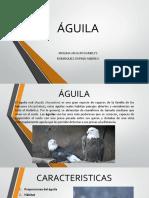 Estrategia de juego Alguila - paloma