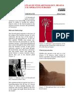 Thyroglossal Duct Remnants-1
