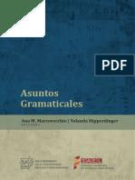 Asuntos Gramaticales 2017