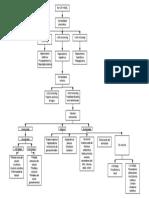 Diagnóstico etiologico hiponatremia.pdf