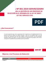 Servir Directiva de Seleccion 2019