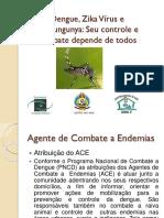 Dengue, Zika Vírus e Chikungunya. Seu controle e combate depende de todos