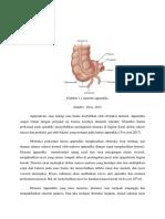 Patogenesis Appendicitis (1)