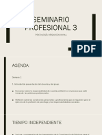 Seminario profesional 3.pptx