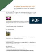 10 Plantas en Peligro de Extinción en El Perú Ceci