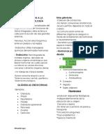 3er PARCIAL endocrinología nuevo.pdf