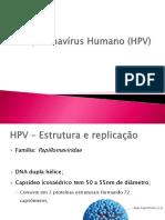 Papiloma vírus humano HPV