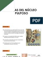 Hernia de Nucleo Pulposo