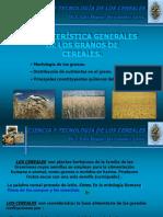 1-Caracteristicas Generales de Los Granos de Cereales