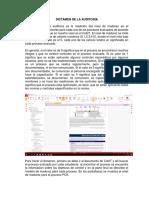Ejemplo Dictamen de La Auditoria 2019 II