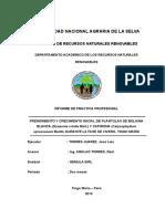 INFORME-FINAL-2DO_-_luis1 (Reparado)