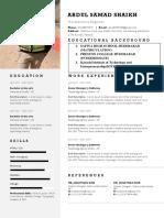 Professional Resume v2