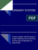 Sistem Perkemihan.pptx