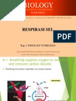 3. Respirasi Sel