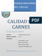 CALIDAD DE CARNES.docx