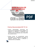 03_FUGA DE FLUJO MAGNÉTICO BASIC.pdf