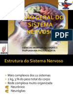 Visão Geral Do Sistema Nervoso Aula 1