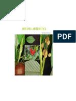 Presentación botanica sistematica