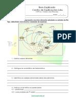 B.2.1 - Ficha de Trabalho - Cadeias e Teias Alimentares (2)