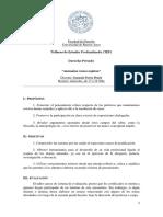 2019-tep-2c-gonzalo-perez-pejcic.pdf