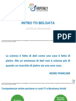 Intro Hopenly Big Data