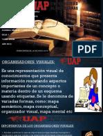 TRABAKJO DE ESQUEMAS VISUALES.pptx
