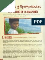 Riesgos y Oportunidades Sinodo de La Amazonía