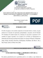 Aguilar Castillo Defensa Privada[1]