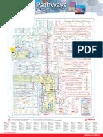 Metabolic Pathways Poster - Mapa Metabólico Completo
