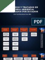 Convenios y Tratados en Materia Ambiental Celebrados Por Ecuador