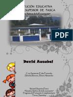 David Ausubel.