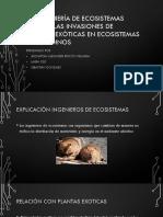 La Ingeniería de Ecosistemas Facilita Las Invasiones De