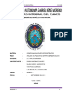 Analisis de Reservas de Gas Natural en Bolivia
