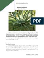 BIODIVERSIDAD MEXICANA.docx