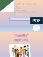 Clases de familias