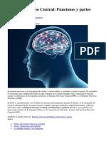 Sistema Nervioso Central-Funsiones y partes.docx