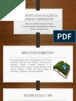 PRESENTACION CONSTITUCION POLITICA Y MEDIO AMBIENTE final.pptx