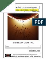 A Post i La Sistema Genital 2016