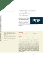 ER stress mechanisms