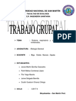 APARATO RESPIRATORIO Y CIRCULAR DE VERTEBRADOS.docx