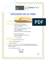 Informe -Proyecto de Ct